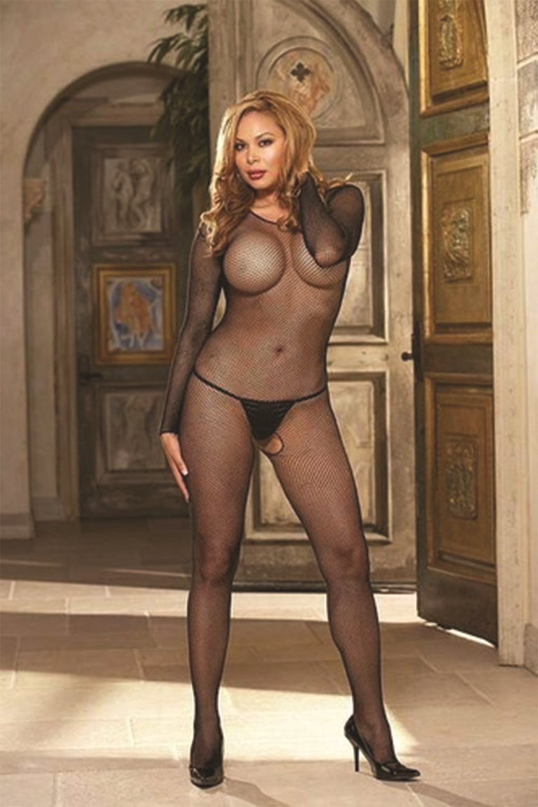 0015 Dreamgirl Body Stocking