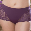 3311 Elila Lace Cheeky
